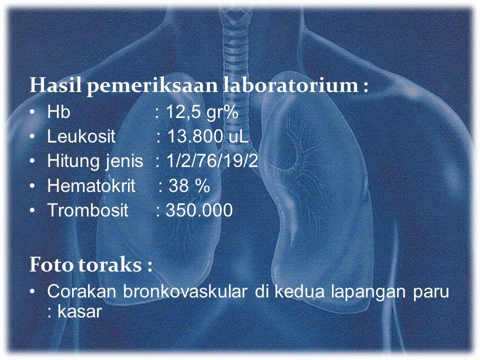 Hasil pemeriksaan laboratorium :