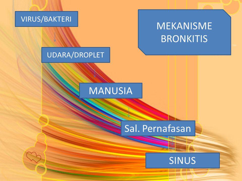 MEKANISME BRONKITIS MANUSIA Sal. Pernafasan SINUS VIRUS/BAKTERI