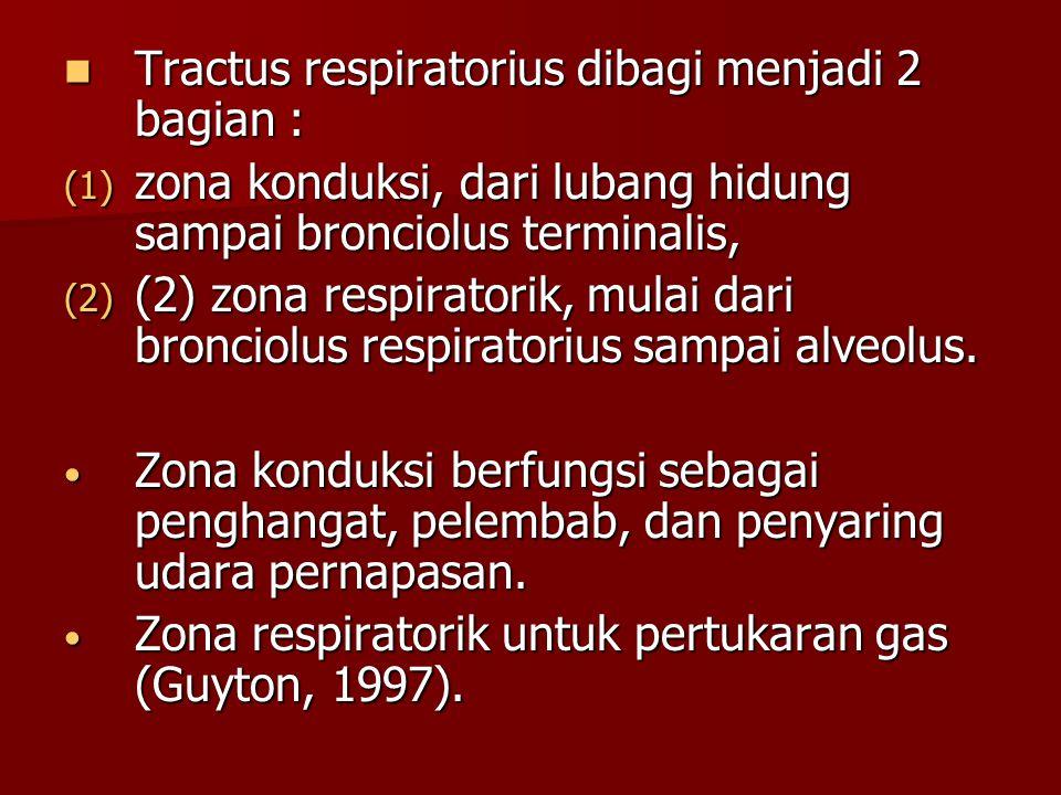 Tractus respiratorius dibagi menjadi 2 bagian :