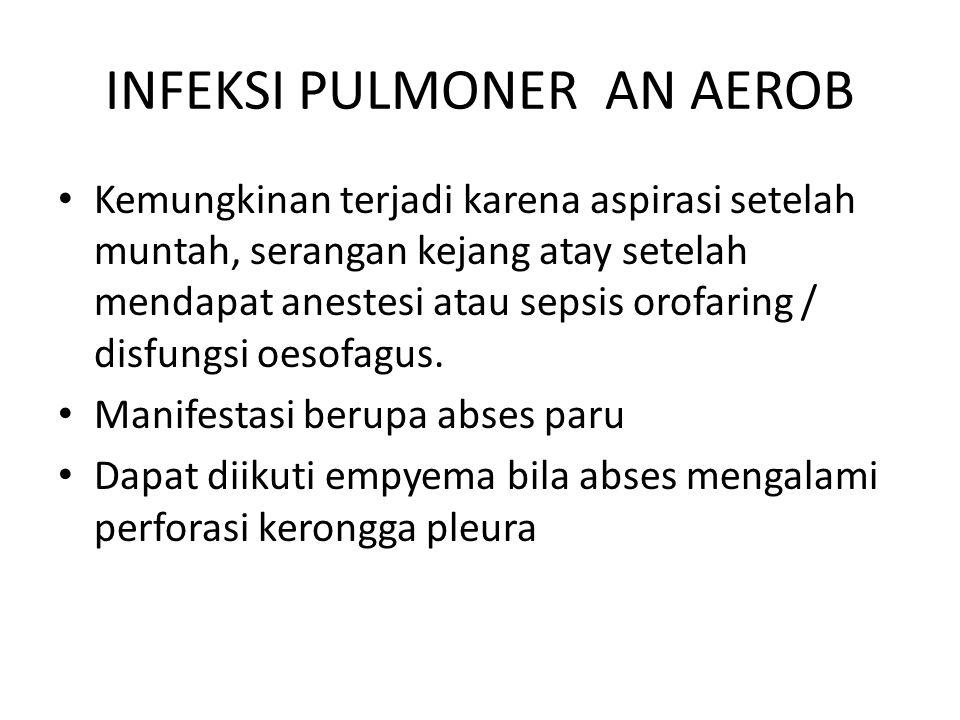 INFEKSI PULMONER AN AEROB