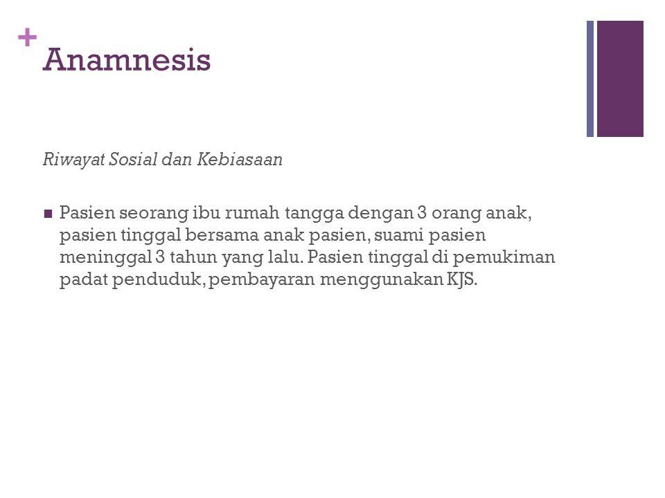 Anamnesis Riwayat Sosial dan Kebiasaan