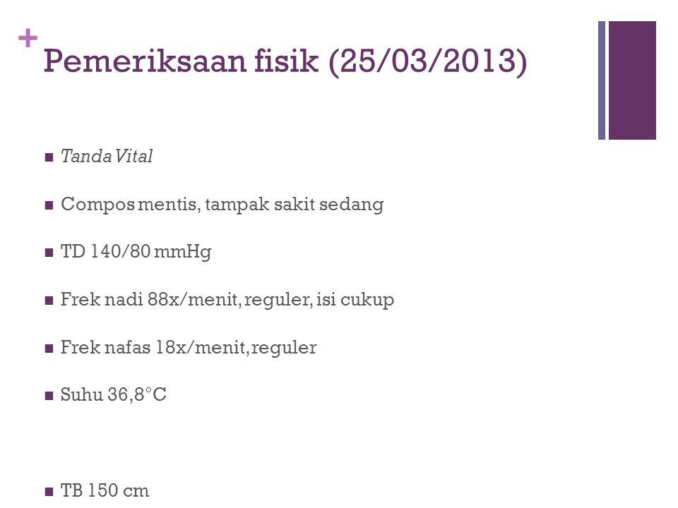 Pemeriksaan fisik (25/03/2013)