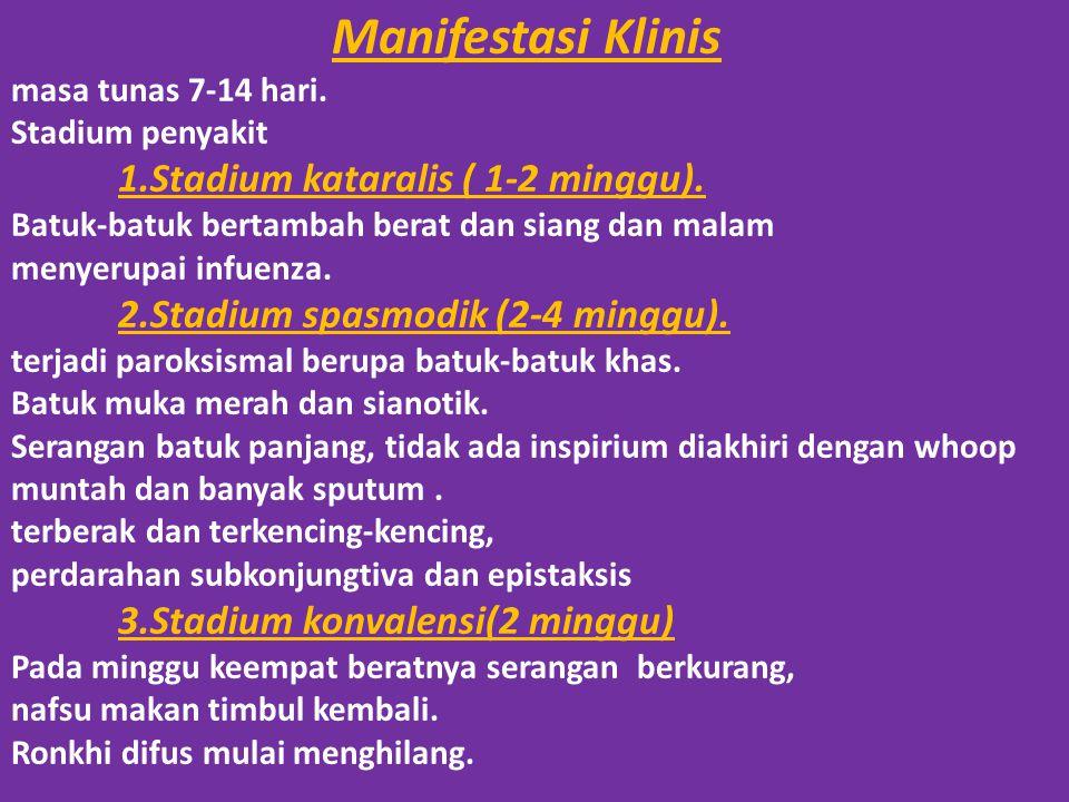 Manifestasi Klinis masa tunas 7-14 hari.