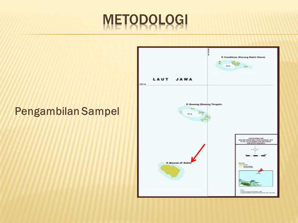METODOLOGI Pengambilan Sampel