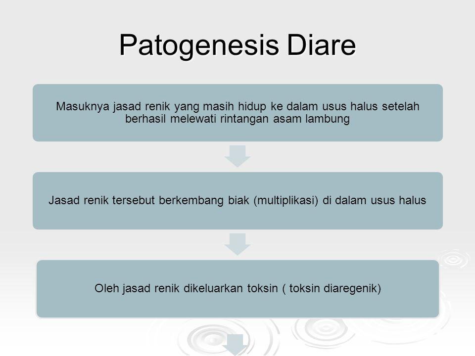 Oleh jasad renik dikeluarkan toksin ( toksin diaregenik)