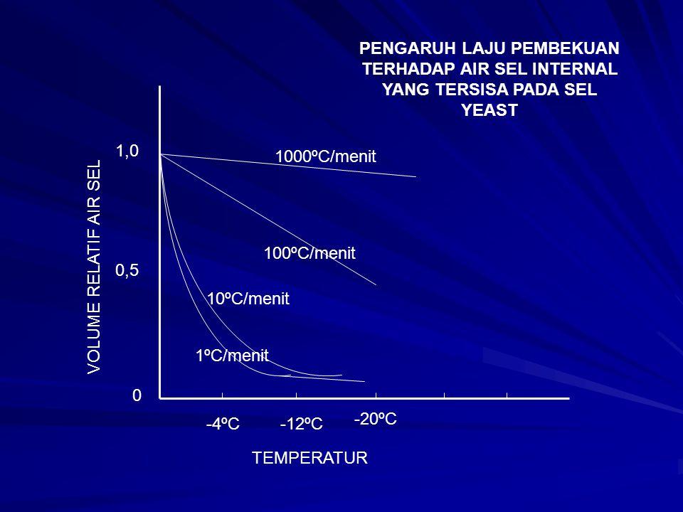 PENGARUH LAJU PEMBEKUAN TERHADAP AIR SEL INTERNAL YANG TERSISA PADA SEL YEAST