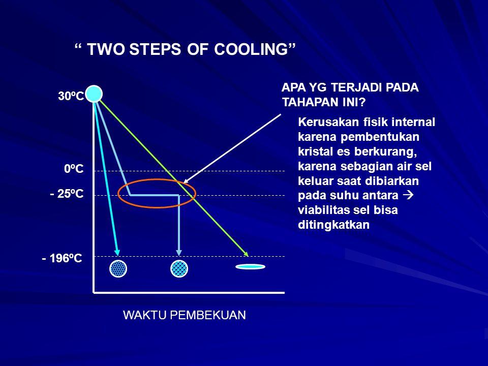 TWO STEPS OF COOLING APA YG TERJADI PADA TAHAPAN INI 30ºC