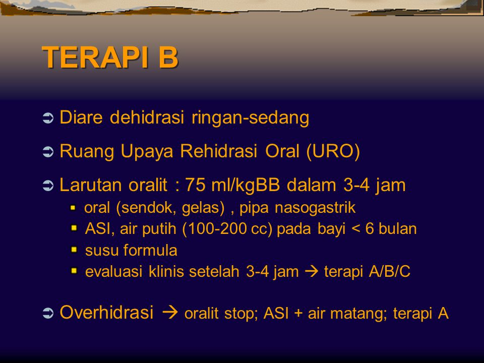 TERAPI B Diare dehidrasi ringan-sedang