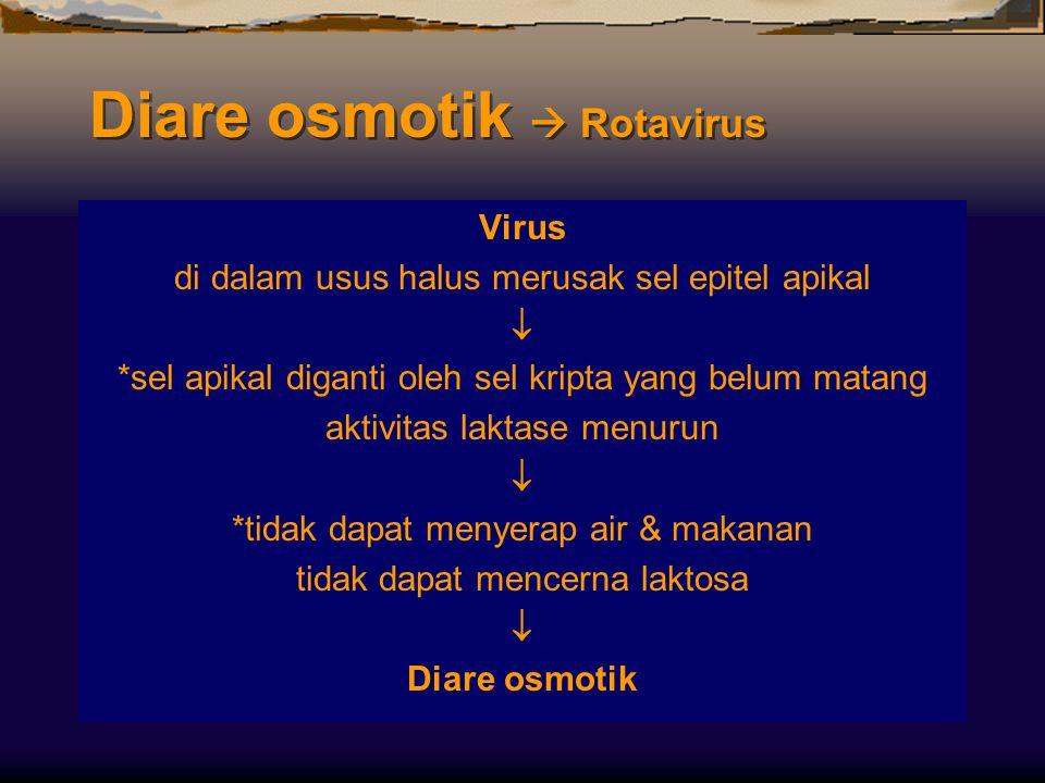 Diare osmotik  Rotavirus