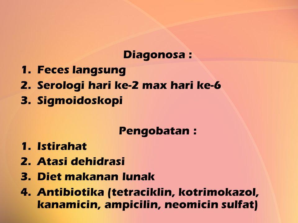 Diagonosa : Feces langsung. Serologi hari ke-2 max hari ke-6. Sigmoidoskopi. Pengobatan : Istirahat.