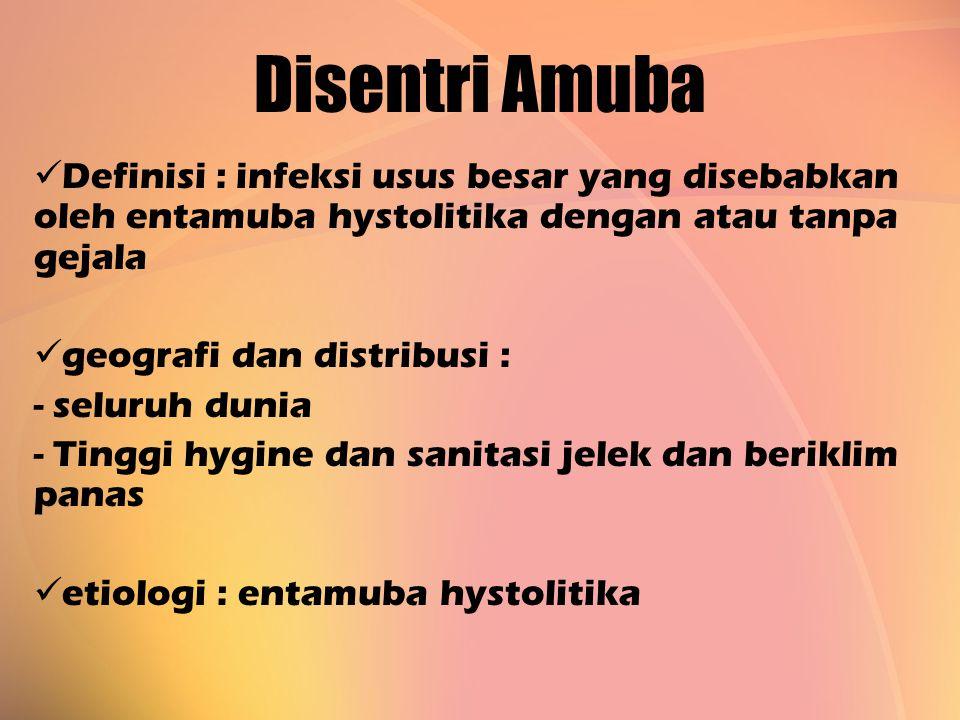 Disentri Amuba Definisi : infeksi usus besar yang disebabkan oleh entamuba hystolitika dengan atau tanpa gejala.