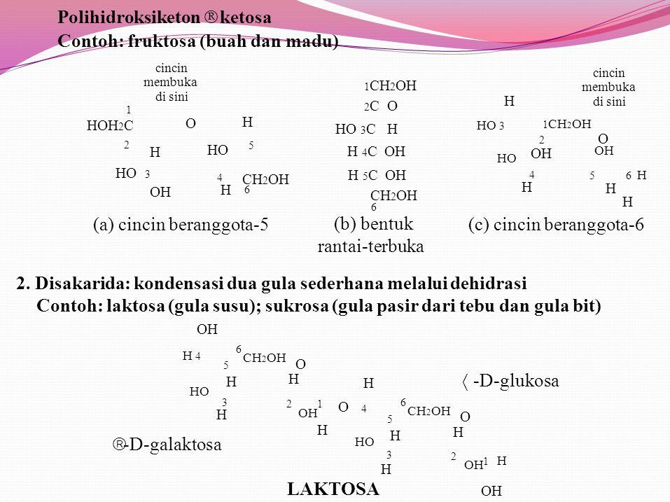 Polihidroksiketon ⇒ ketosa Contoh: fruktosa (buah dan madu)