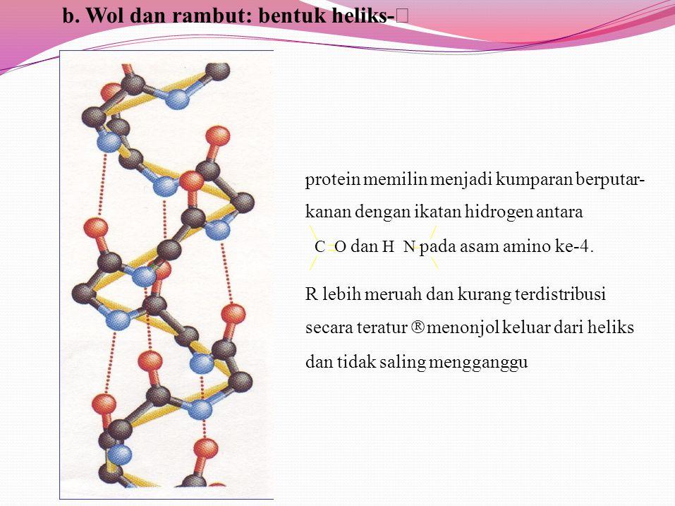 b. Wol dan rambut: bentuk heliks-α