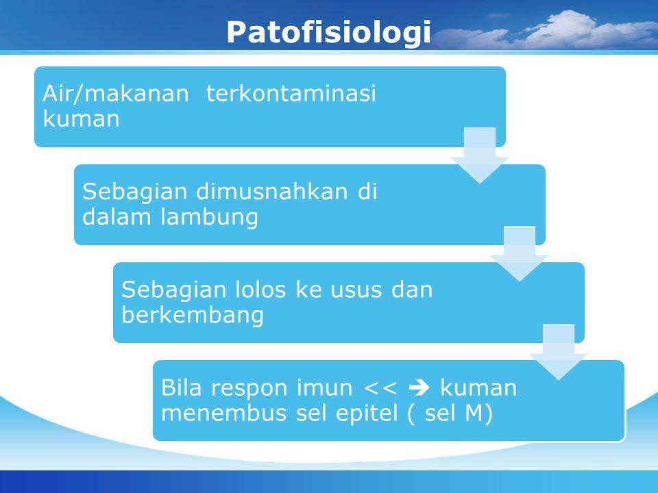 Patofisiologi Air/makanan terkontaminasi kuman