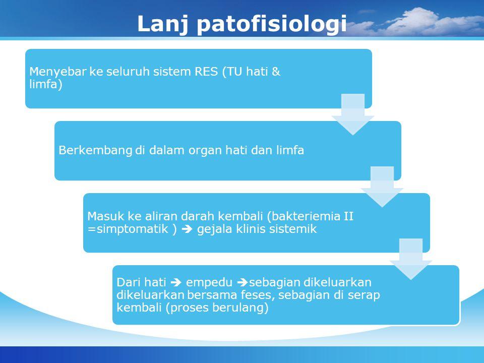 Lanj patofisiologi Menyebar ke seluruh sistem RES (TU hati & limfa)