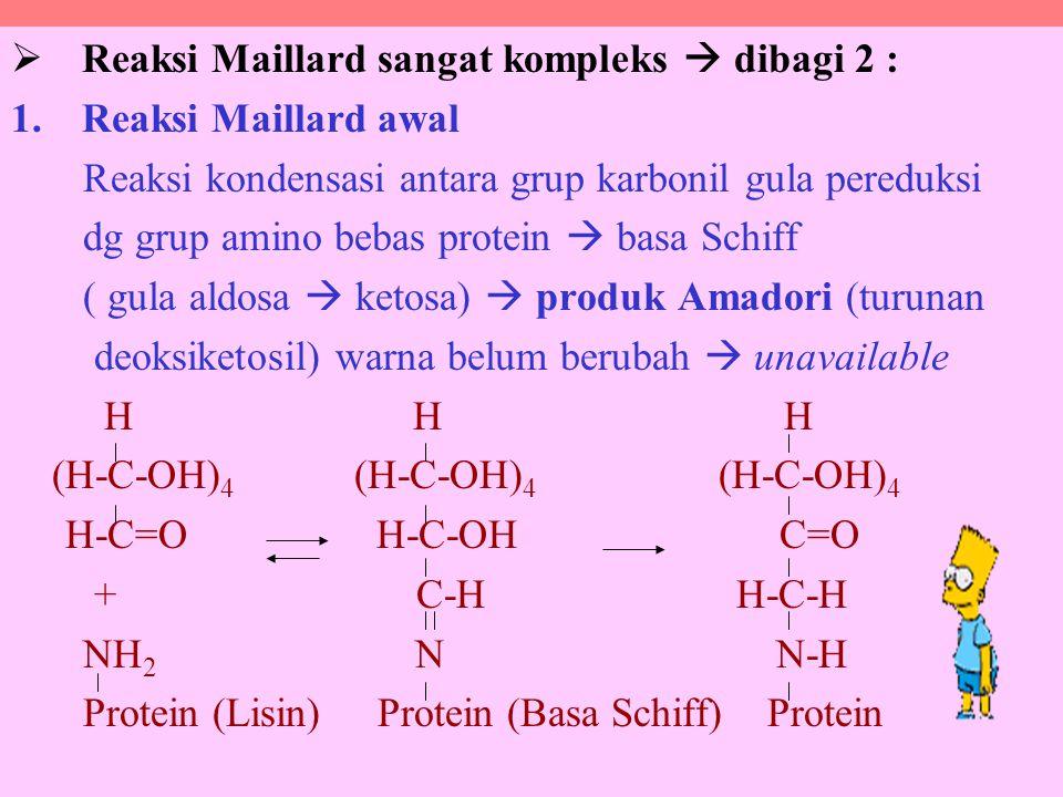 Reaksi Maillard sangat kompleks  dibagi 2 :