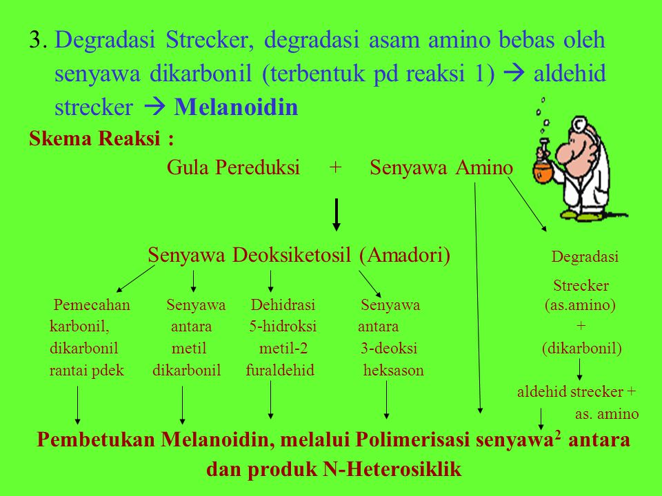3. Degradasi Strecker, degradasi asam amino bebas oleh