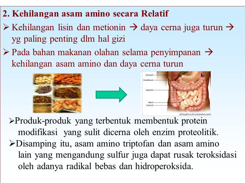 2. Kehilangan asam amino secara Relatif