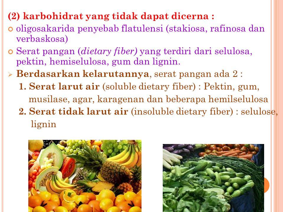 (2) karbohidrat yang tidak dapat dicerna :