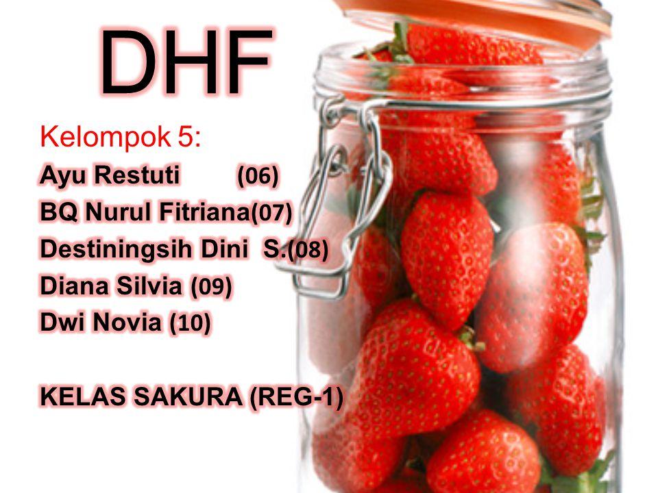 DHF Kelompok 5: Ayu Restuti (06) BQ Nurul Fitriana(07)