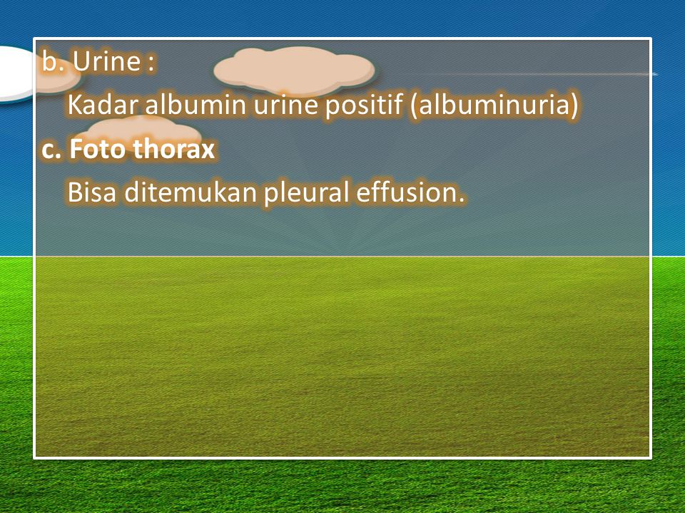 b. Urine : Kadar albumin urine positif (albuminuria) c.