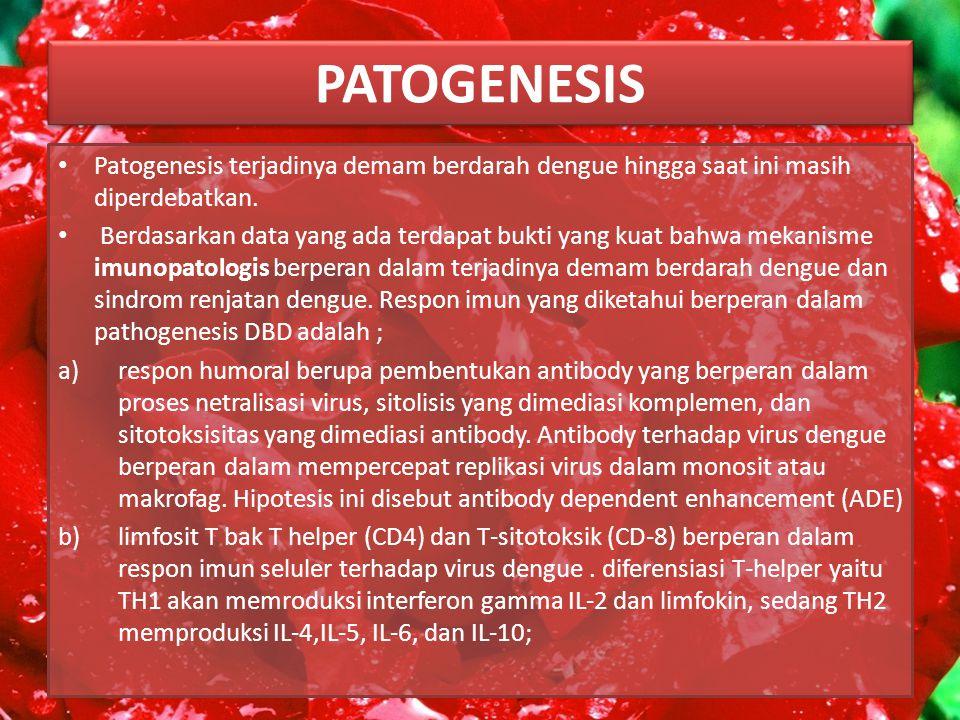 PATOGENESIS Patogenesis terjadinya demam berdarah dengue hingga saat ini masih diperdebatkan.