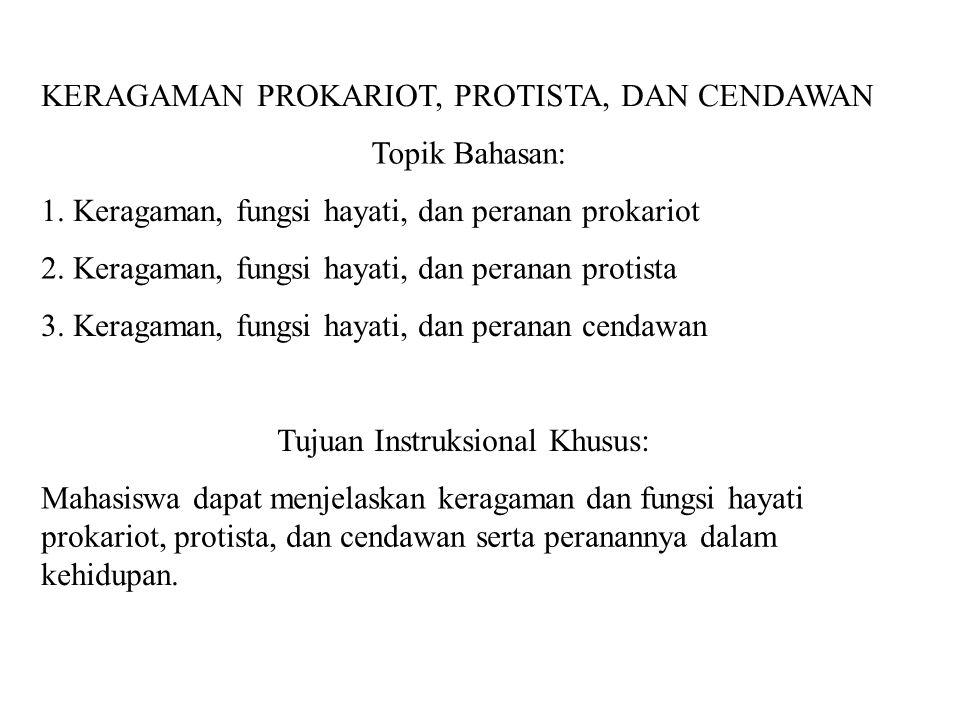 KERAGAMAN PROKARIOT, PROTISTA, DAN CENDAWAN