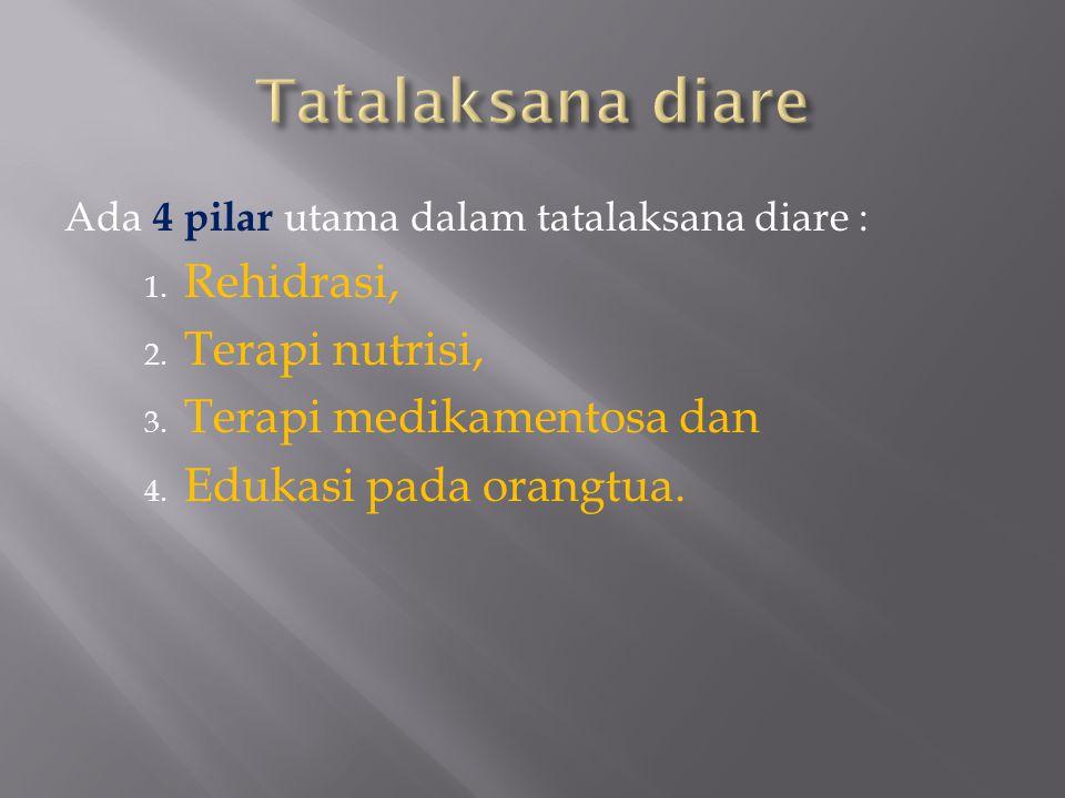 Tatalaksana diare Rehidrasi, Terapi nutrisi, Terapi medikamentosa dan