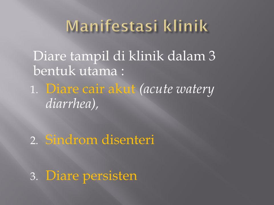 Manifestasi klinik Diare tampil di klinik dalam 3 bentuk utama :