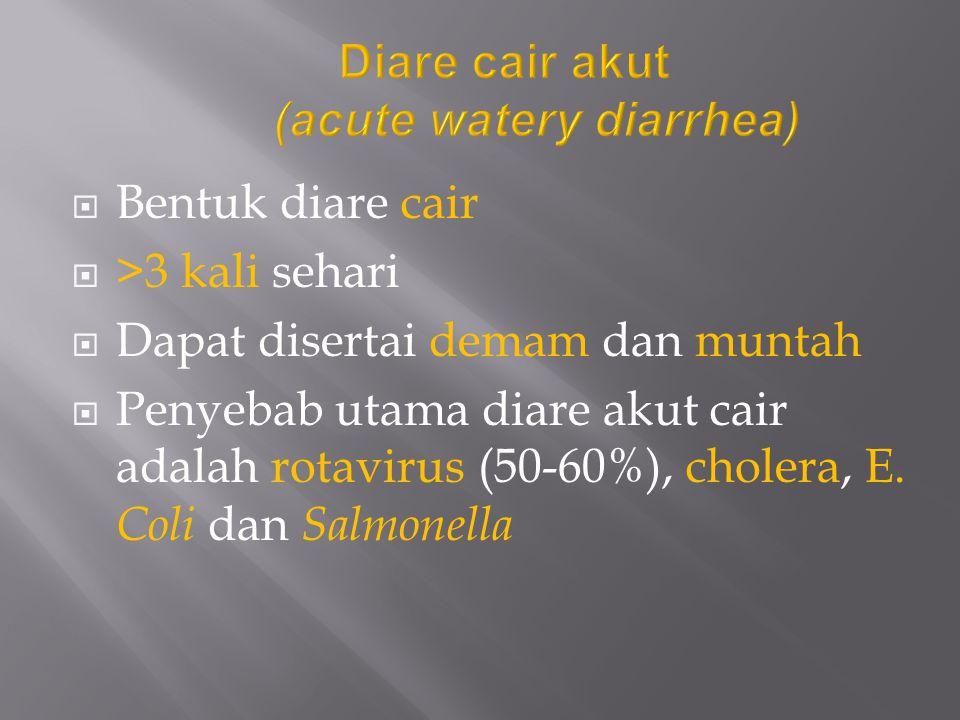 Diare cair akut (acute watery diarrhea)