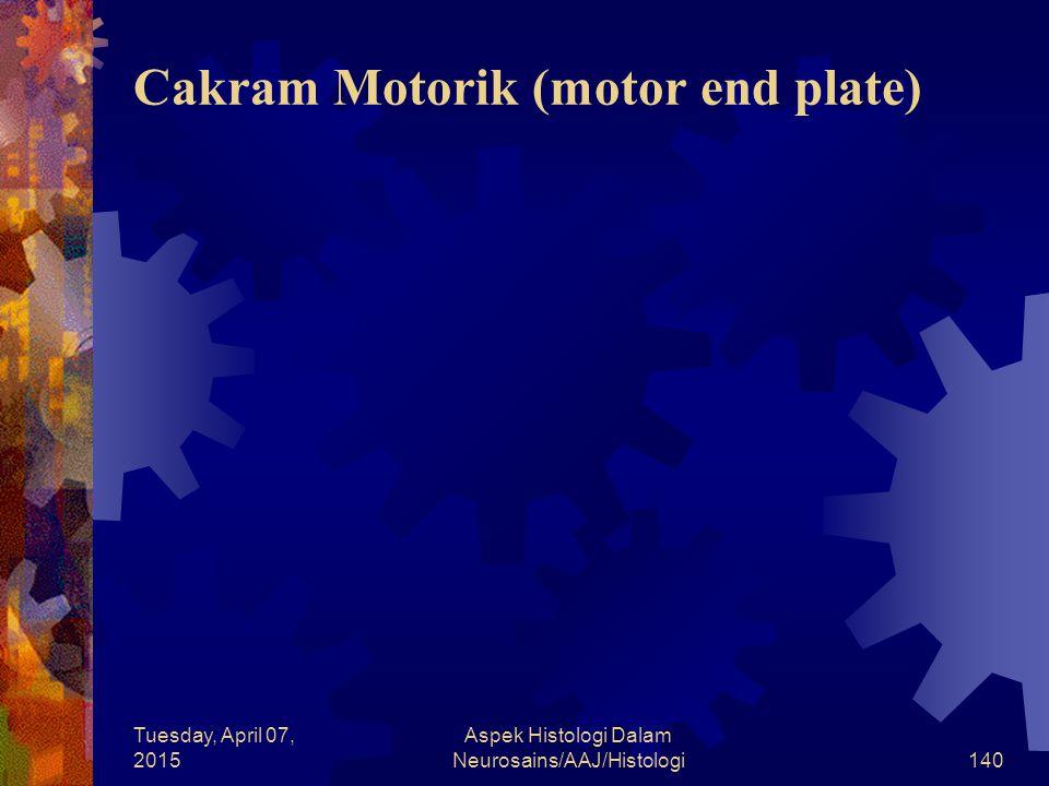 Cakram Motorik (motor end plate)