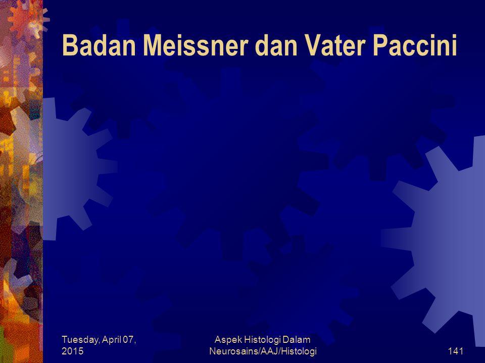 Badan Meissner dan Vater Paccini
