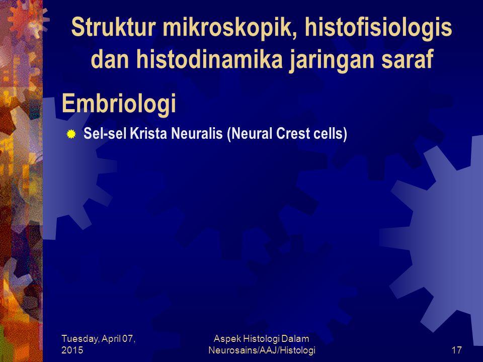 Struktur mikroskopik, histofisiologis dan histodinamika jaringan saraf