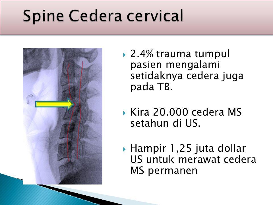 Spine Cedera cervical 2.4% trauma tumpul pasien mengalami setidaknya cedera juga pada TB. Kira 20.000 cedera MS setahun di US.