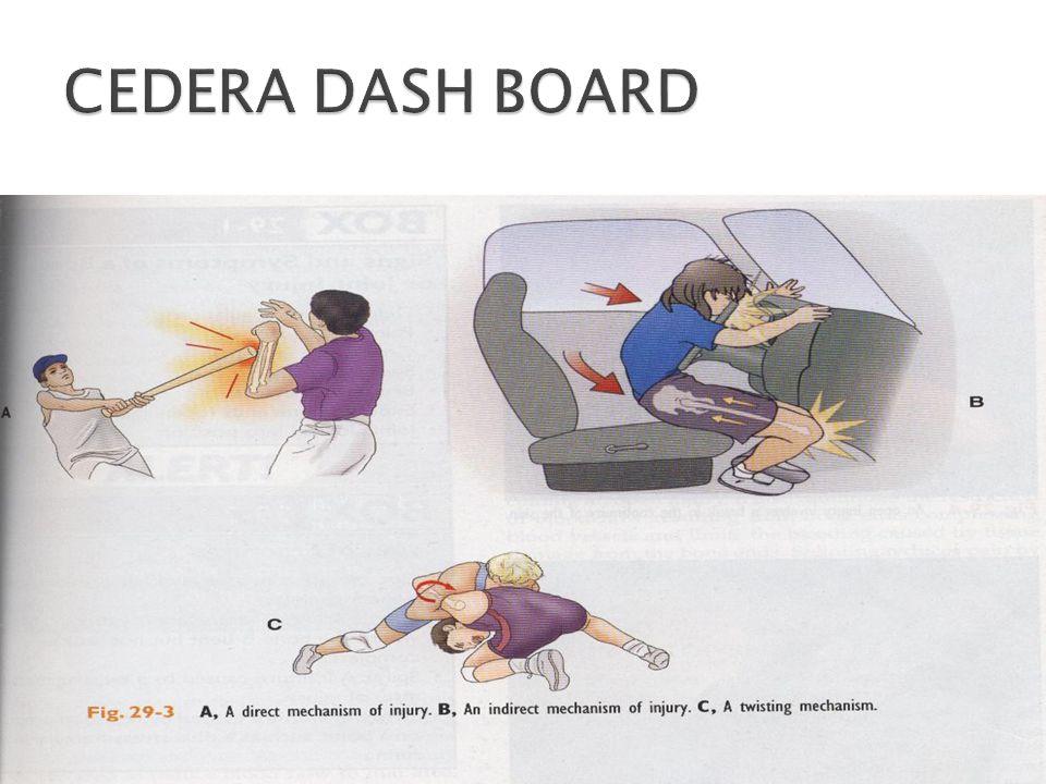 CEDERA DASH BOARD 11