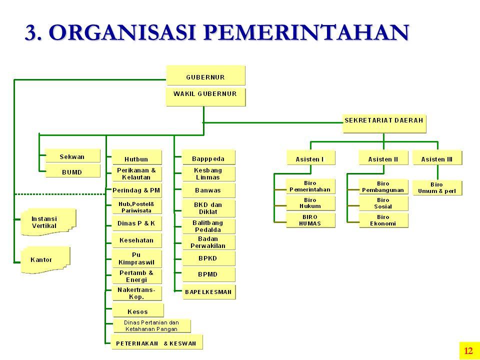 3. ORGANISASI PEMERINTAHAN