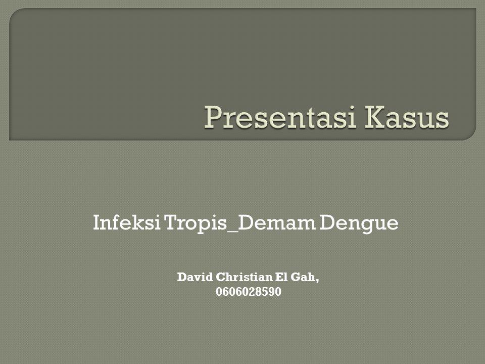Infeksi Tropis_Demam Dengue