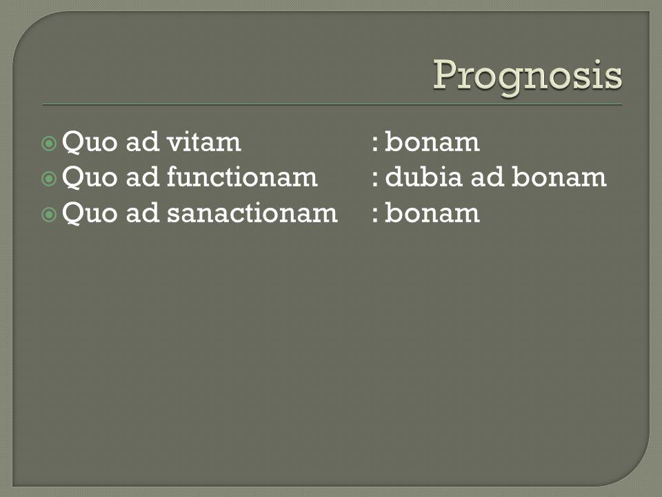 Prognosis Quo ad vitam : bonam Quo ad functionam : dubia ad bonam
