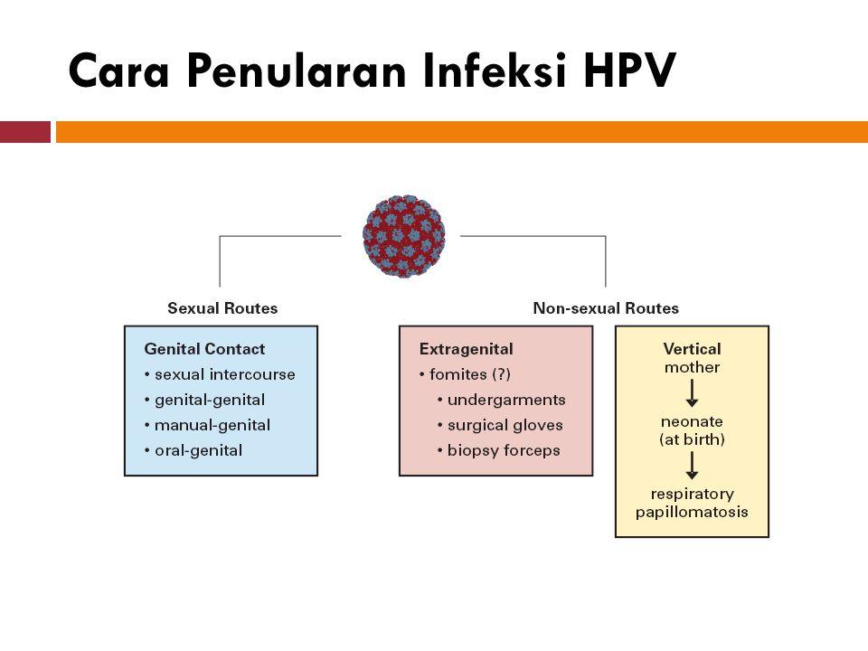Cara Penularan Infeksi HPV