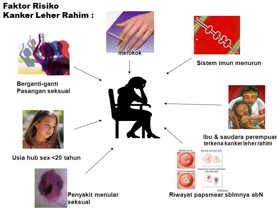 Faktor Risiko Kanker Leher Rahim : Berganti-ganti Pasangan seksual