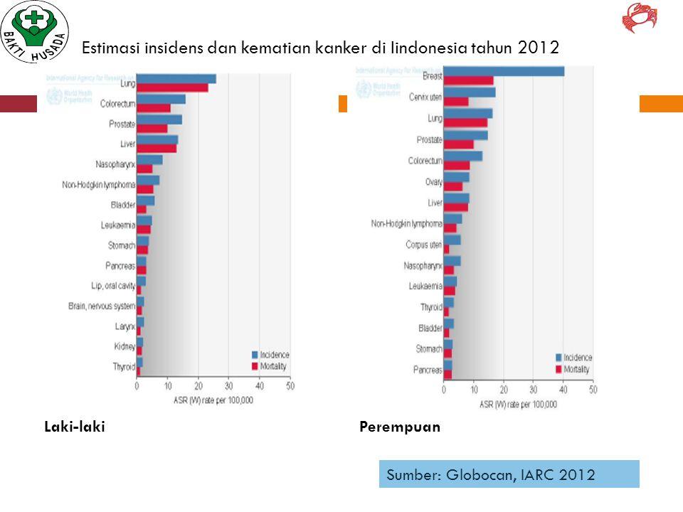 Estimasi insidens dan kematian kanker di Iindonesia tahun 2012