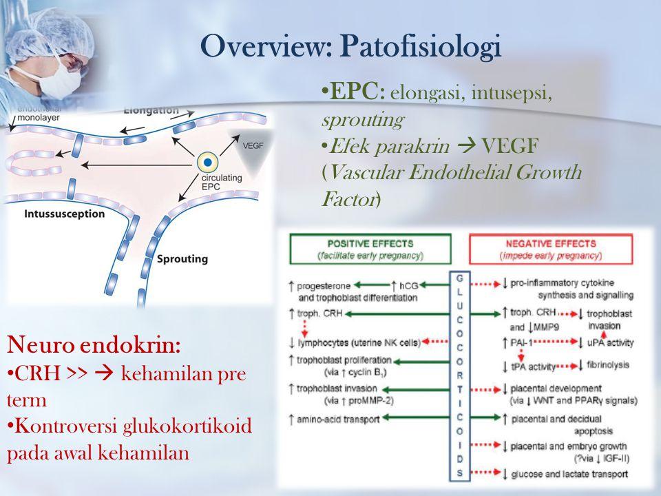 Overview: Patofisiologi