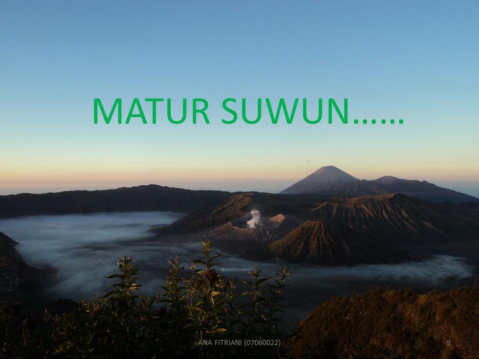 MATUR SUWUN…… ANA FITRIANI (07060022)