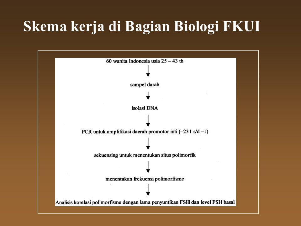 Skema kerja di Bagian Biologi FKUI