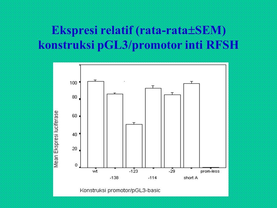 Ekspresi relatif (rata-rataSEM) konstruksi pGL3/promotor inti RFSH