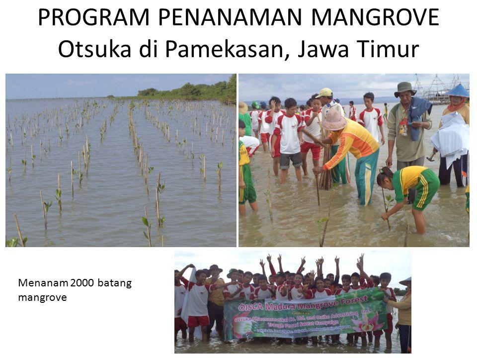 PROGRAM PENANAMAN MANGROVE Otsuka di Pamekasan, Jawa Timur