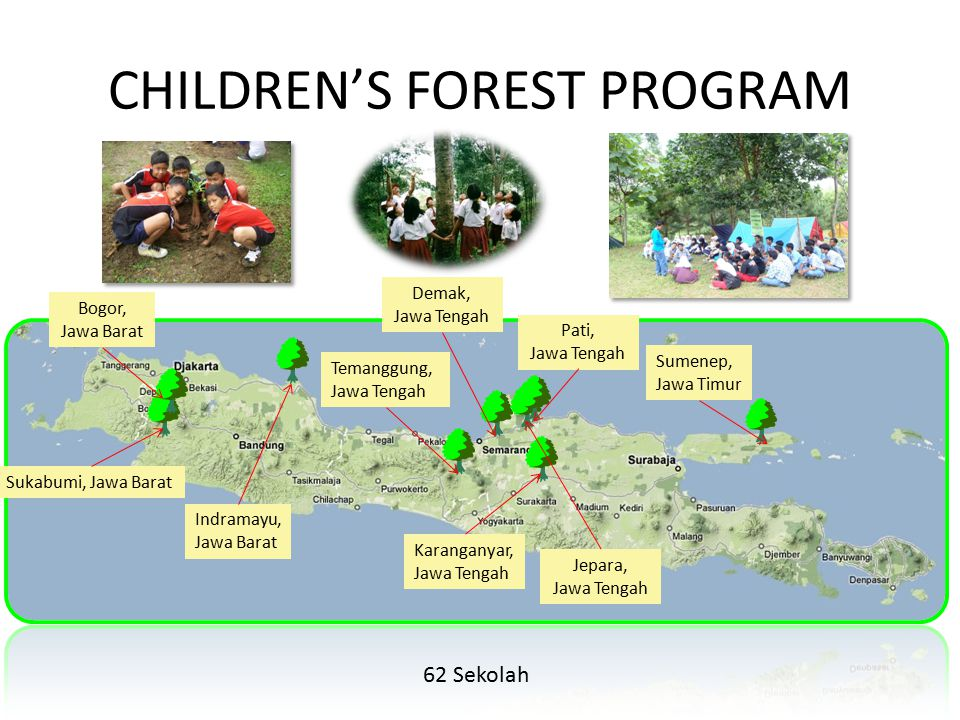CHILDREN'S FOREST PROGRAM