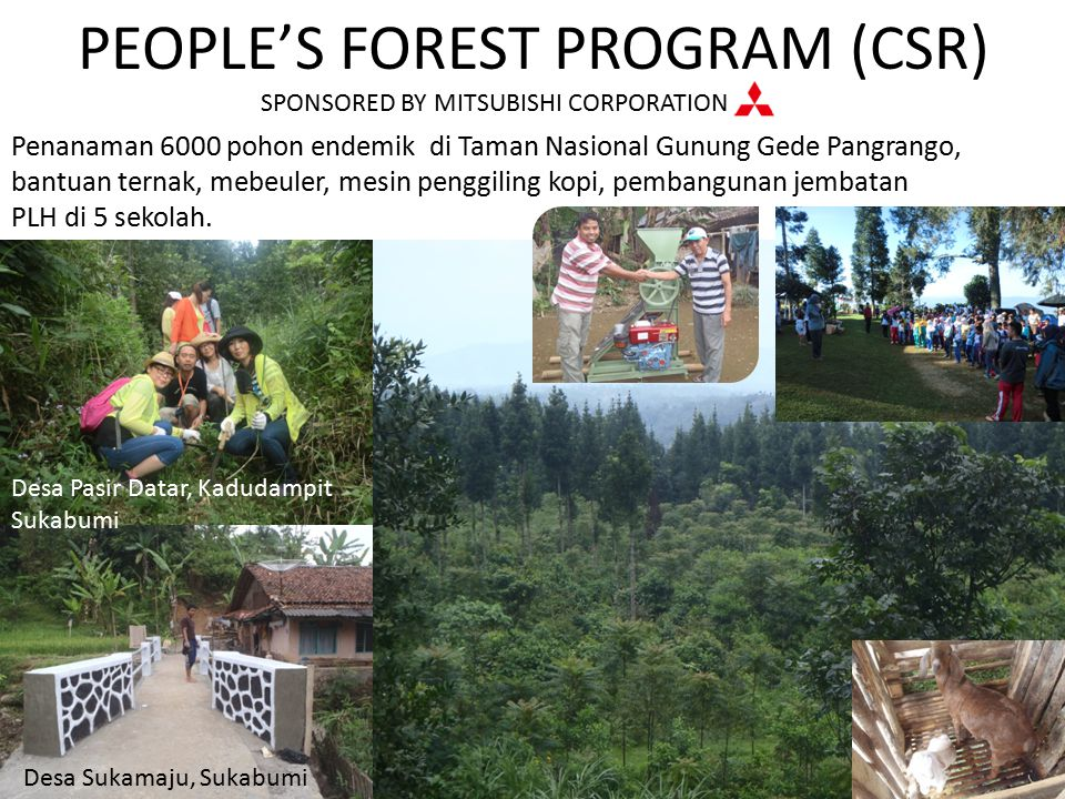 PEOPLE'S FOREST PROGRAM (CSR)