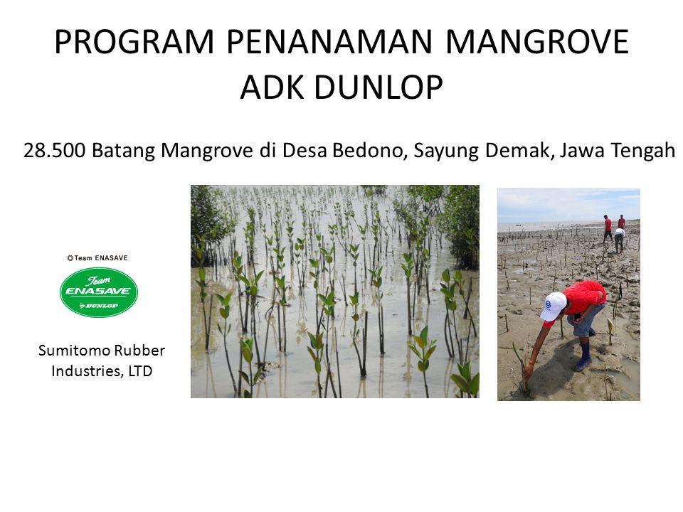 PROGRAM PENANAMAN MANGROVE ADK DUNLOP