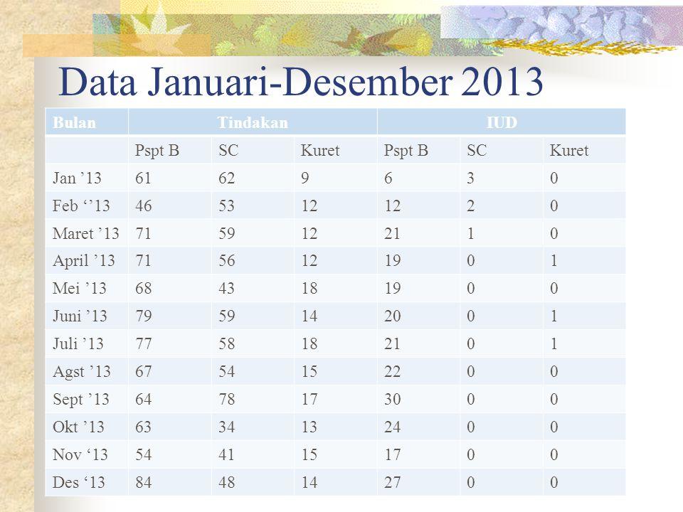 Data Januari-Desember 2013